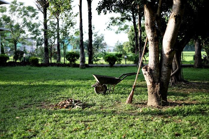 obras jardín