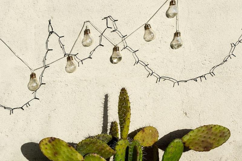 convertir tu terraza en un jardín